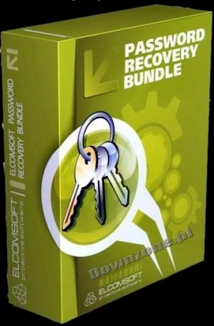 [Multi]Password Recovery Bundle Forensic Edition 2013 et Dictionaries
